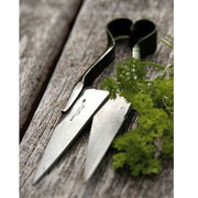 Burgon & Ball Mini Herb Shear