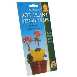 Plant Pot Sticky Traps