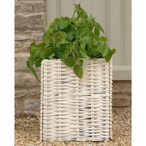 Willow Potato Planter - 2 Colours Available