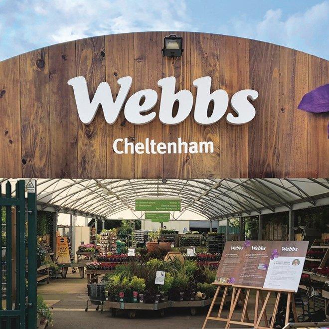 Introducing Webbs, Cheltenham
