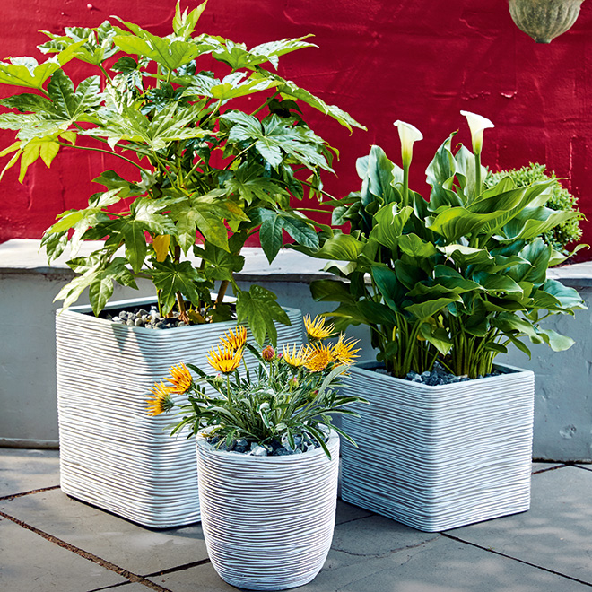 5 Ways to Use Pots in Your Garden