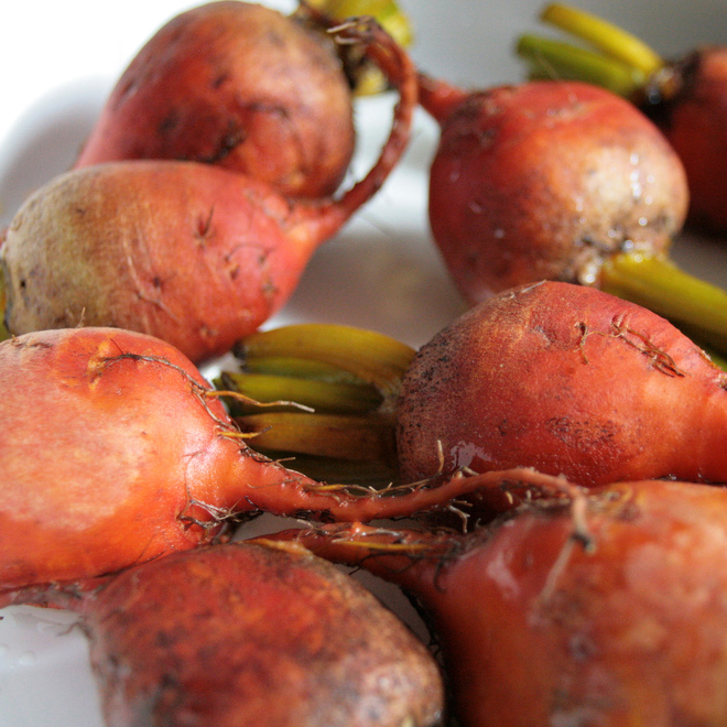 Roasted Candy and Golden Beetroot with Balsamic, Garlic and Thyme