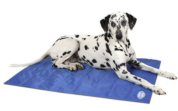 Scruffs Blue Self-Cooling Mat