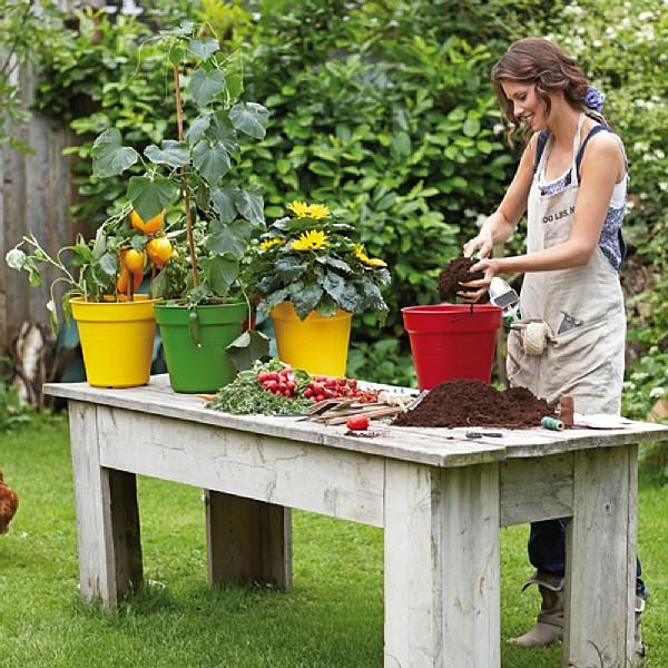 elho 30cm green basics grow pot plastic growing pots webbs direct online garden centre. Black Bedroom Furniture Sets. Home Design Ideas