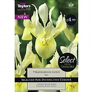 Iris Katharines Gold (9 Bulbs)
