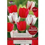 Strawberries & Cream Classic Combinations (15 Bulbs)