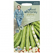 David Domoney Broad Bean Vectra Seeds