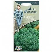 David Domoney Green Broccoli Marathon F1 Seeds