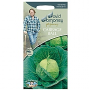 David Domoney Cabbage Ball Golden Acre/Primo (II) Seeds