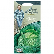 David Domoney Savoy Ormskirk Cabbage Seeds