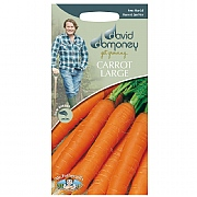 David Domoney Large Jitka F1 Carrot Seeds