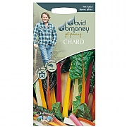 David Domoney Chard Bright Lights Seeds