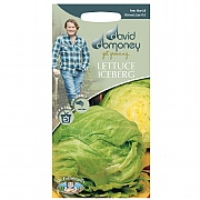David Domoney Iceberg Balmoral Lettuce Seeds