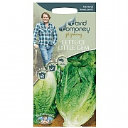 David Domoney Little Gem Delight Lettuce Seeds
