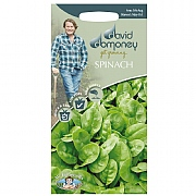 David Domoney Spinach Emilia F1 Seeds