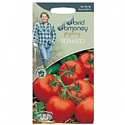 David Domoney Tomato Ferline F1 Seeds