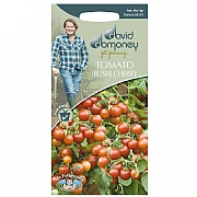 David Domoney Cherry Falls Tomato Seeds