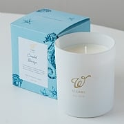 Webbs Coastal Breeze Scented Candle