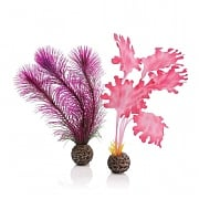 biOrb Pink Kelp Set Small