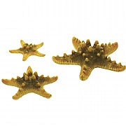biOrb Yellow Sea Star Set