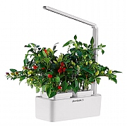 Plantpak Hydro-Pod Indoor Garden with LED Light