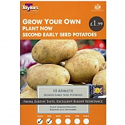 Athlete Second Early Seed Potatoes Taster Pack