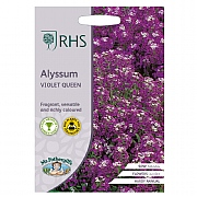 RHS Alyssum Violet Queen Seeds
