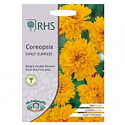 RHS Coreopsis Early Sunrise Seeds