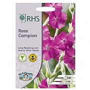 RHS Rose Campion Seeds
