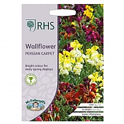 RHS Wallflower Persian Carpet Seeds