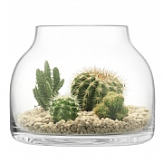 LSA Glass Plant Funnel Pot 21.5cm