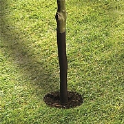 "Garland Spiral Tree Guard - 61cm (24"")"