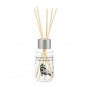 Wax Lyrical Raccoon Around The Christmas Tree Reed Diffuser 50ml