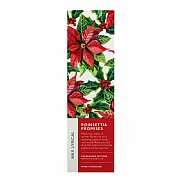 Wax Lyrical Poinsettia Promises Reed Diffuser 100ml