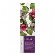 Wax Lyrical Hellebore Happiness Reed Diffuser 100ml