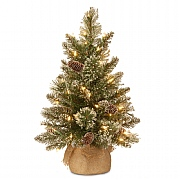 2ft Pre-Lit Glittery Bristle Pine Artificial Christmas Tree