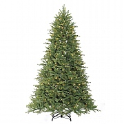 7ft Pre-Lit Ashville Fir Artificial Christmas Tree