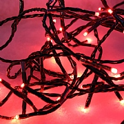 240 Red LED Christmas Twinkle Lights