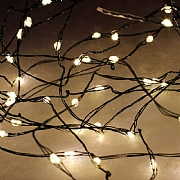 40 Warm White LED Micro String Lights with Green Cable (Battery Operated)