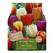Mixed Garden Tulips (20 Bulbs)