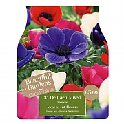 Anemone De Caen Mixed (35 Bulbs)