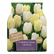 Sherbert Lemons Combi Pack (15 Bulbs)