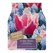 Baby Blushes Combi Pack (20 Bulbs)
