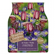 Fairy Walk Combi Pack (50 Bulbs)