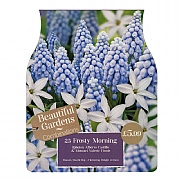 Frosty Morning Combi Pack (25 Bulbs)