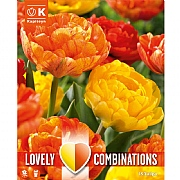 Combi Tulip Duopack Double Yellow & Orange (15 Bulbs)