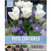 Anemone Blue & Tulip White Container Pack (20 Bulbs)