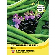 Thompson & Morgan Dwarf Bean Nautica Seeds