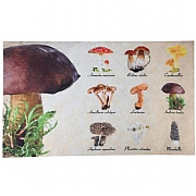 Fallen Fruits Mushrooms Printed Doormat 75cm