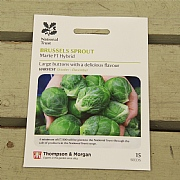 Thompson & Morgan National Trust Brussels Sprout Marte F1 Hybrid